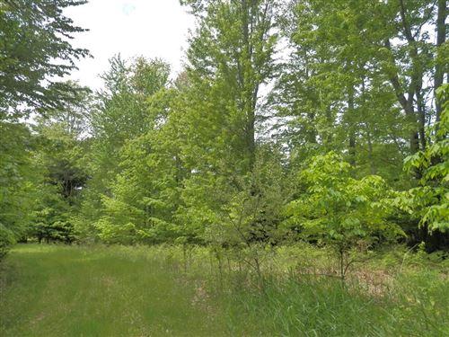 Photo of Parcel H Wildwood Trail, Manistee, MI 49660 (MLS # 21097162)