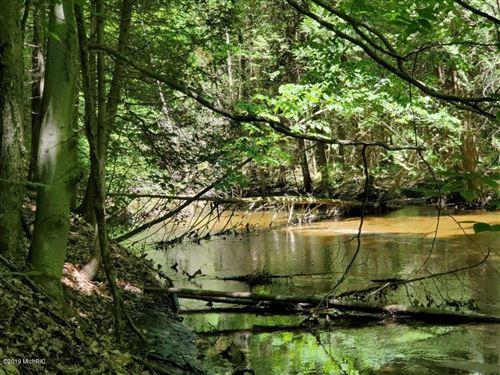 Photo of 0 White River Drive, Hesperia, MI 49421 (MLS # 18021166)