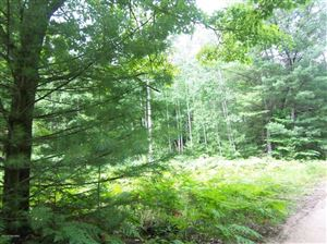 Photo of 00 Big Bend, Evart, MI 49631 (MLS # 18036170)