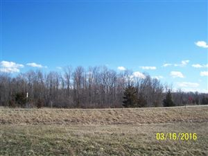 Photo of Behner Road, New Buffalo, MI 49117 (MLS # 10019176)
