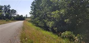 Photo of 2 acres Prcl 7 N Wilson Road, Mears, MI 49436 (MLS # 19036204)