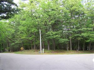 Photo of 2 lots Chester Street, Pentwater, MI 49449 (MLS # 18025222)