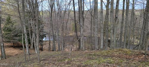 Photo of V/L 80 A N Tuttle, Free Soil, MI 49411 (MLS # 21012223)