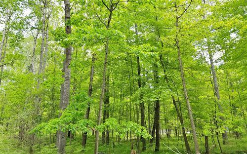 Photo of 8198 Tanglewood Trail, Stanwood, MI 49346 (MLS # 19012227)