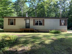 Photo of 8725 W Duck Road, Mears, MI 49436 (MLS # 19041265)