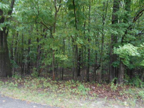Photo of N Claeys Drive #13, Free Soil, MI 49411 (MLS # 21111265)