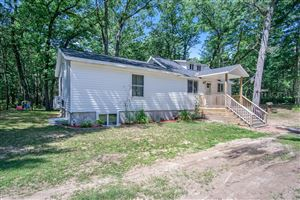 Photo of 5560 Whiting Avenue, Pentwater, MI 49449 (MLS # 19040269)