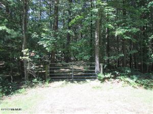 Photo of Lot 27 N Vachon Street, Mears, MI 49436 (MLS # 18044274)