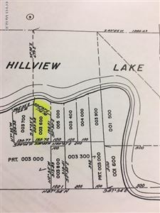 Photo of 0000 S Hillview Lake Drive, Rodney, MI 49342 (MLS # 18052275)