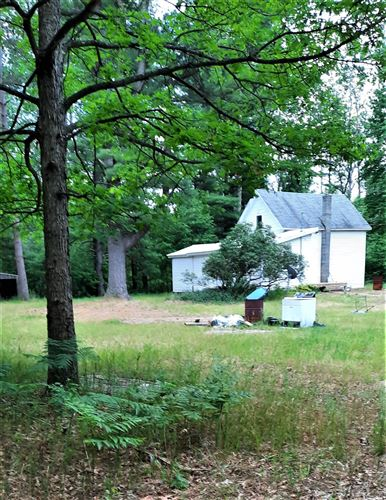Photo of 14980 NILE MILE Road, Kaleva, MI 49645 (MLS # 21022298)