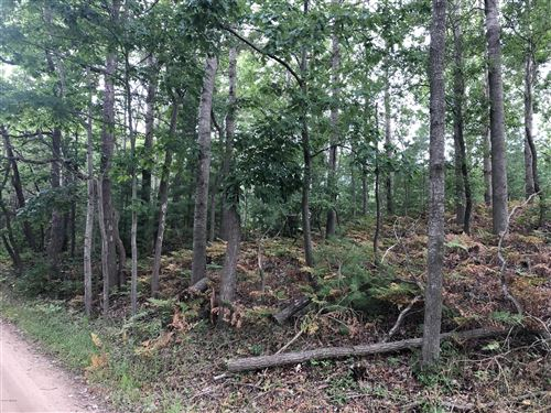 Photo of Lot 2 Harrison Road, Mears, MI 49436 (MLS # 20043319)