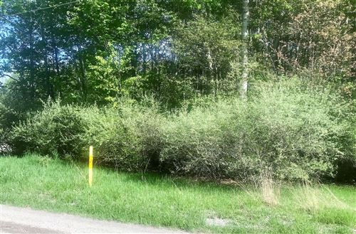 Photo of W Victory Drive, Ludington, MI 49431 (MLS # 20044324)