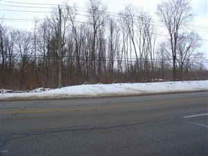 Photo of 0 Red Arrow Highway, Stevensville, MI 49127 (MLS # 18009328)