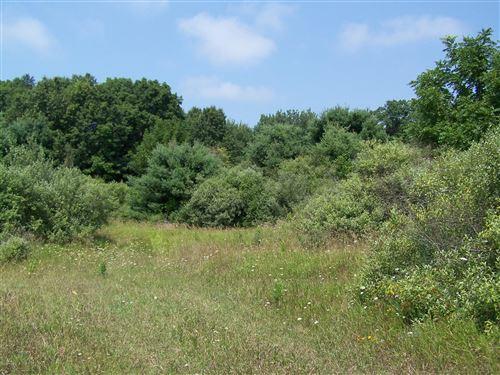 Photo of 40 acres Monroe Road, Pentwater, MI 49449 (MLS # 20018328)