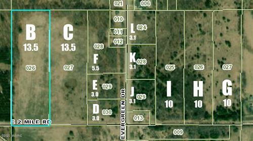 Photo of V/L E 2 Mile Road #PARCEL H, White Cloud, MI 49349 (MLS # 20036340)