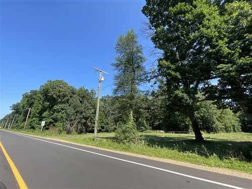Photo of 0 Red Arrow Highway, Union Pier, MI 49129 (MLS # 21098349)