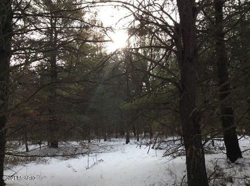 Photo of 1000 Taylor Road, Free Soil, MI 49411 (MLS # 21004363)