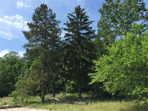Photo of 44780 Blue Star Highway, Covert, MI 49043 (MLS # 20037372)