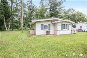 Photo of 5595 Cutler Road, Lakeview, MI 48850 (MLS # 19028389)