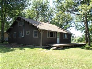 Photo of 8583 Michago Road, Montague, MI 49437 (MLS # 19020390)