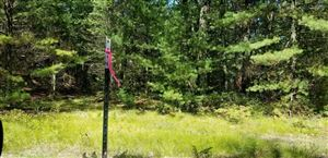 Photo of Bone Road #Lot 17 & 18, Pentwater, MI 49449 (MLS # 19045404)