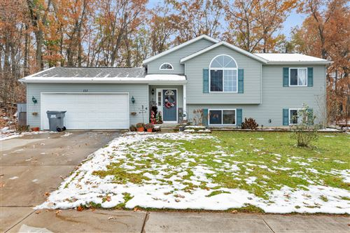 Photo of 111 Hunters Trail Court, Middleville, MI 49333 (MLS # 19055414)