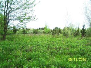Photo of 6291 Harbert Road, Sawyer, MI 49125 (MLS # 2930417)