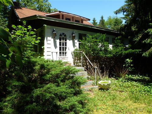 Photo of 9029 W Warren Woods Road, Lakeside, MI 49116 (MLS # 20025419)
