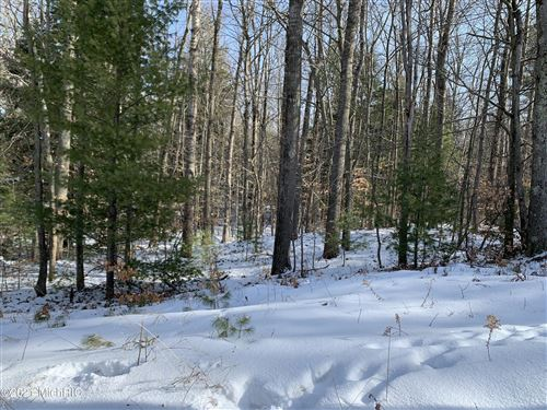 Photo of 2990 N Lincoln Road, Ludington, MI 49431 (MLS # 21002440)