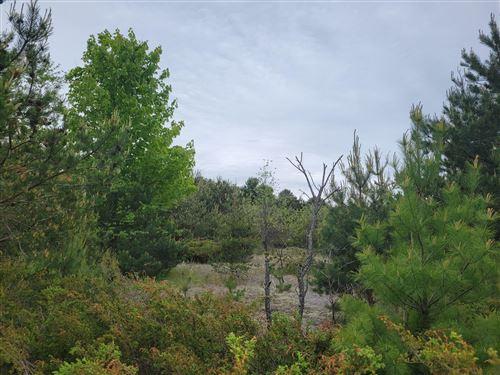 Photo of Vacant Lot Clinton, Bear Lake, MI 49614 (MLS # 21019465)
