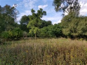 Photo of N Fall River Drive, Coldwater, MI 49036 (MLS # 18049470)