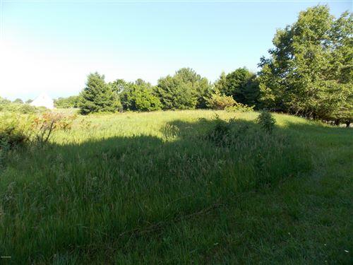 Photo of VL Lakeshore Drive, Ludington, MI 49431 (MLS # 21007471)