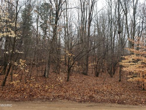 Photo of 4683 E Deer Cove Road, Custer, MI 49405 (MLS # 21011478)
