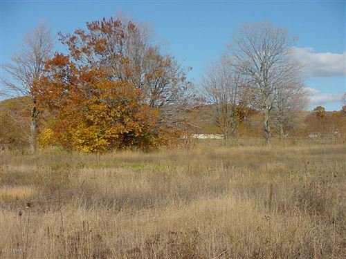 Photo of W Buchanan Road, Shelby, MI 49455 (MLS # 20013489)