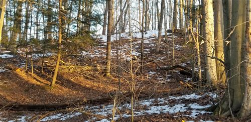 Photo of Lot 22 Sable Point Drive, Shelby, MI 49455 (MLS # 20004500)