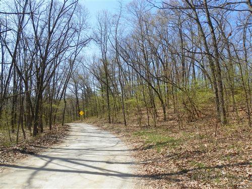Photo of 0 Wildwood Drive, Bridgman, MI 49106 (MLS # 21001511)