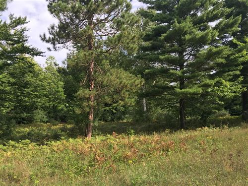 Photo of L (Off) Kerry Road, Manistee, MI 49660 (MLS # 16048530)