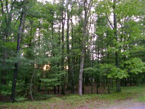 Photo of MEADOW WOOD, Manistee, MI 49660 (MLS # 15027549)