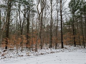 Photo of Lot #28 W Awayin Drive, New Era, MI 49446 (MLS # 19001559)