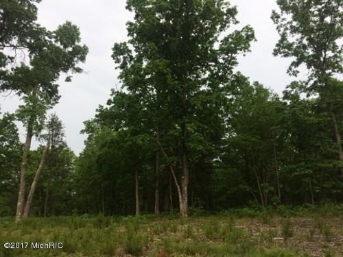Photo of Branch, MI 49402 (MLS # 17028566)