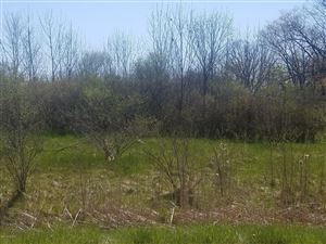 Photo of 1014 Lot 8 Bush Creek Lane, Whitehall, MI 49461 (MLS # 19020567)