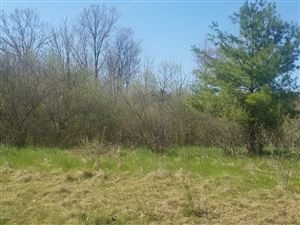 Photo of 1201 Lot 20 Water Tower Lane, Whitehall, MI 49461 (MLS # 19020573)