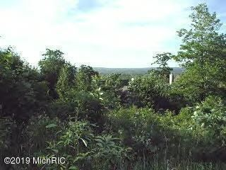 Photo of 0 Woodridge Drive #Lot 2, Mears, MI 49436 (MLS # 20006573)