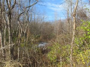 Photo of Marquette Woods Road, Stevensville, MI 49127 (MLS # 10057574)