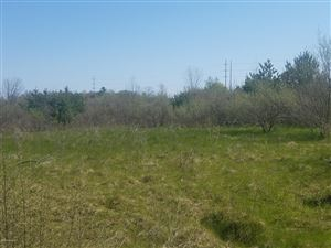 Photo of 1205 Lot 21 Water Tower Lane, Whitehall, MI 49461 (MLS # 19020574)