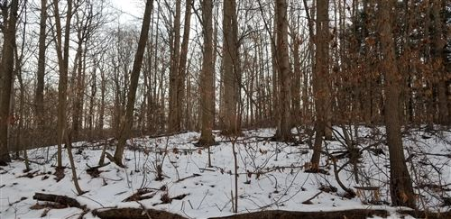 Photo of Lot 31 Sable Point Drive, Shelby, MI 49455 (MLS # 20004595)