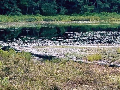 Photo of v/l N Granger, Irons, MI 49644 (MLS # 20023596)