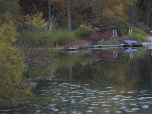 Photo of 10327 Singer Lake Road, Baroda, MI 49101 (MLS # 18053599)