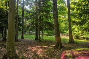 Photo of Lost Canyon Road #6, Pentwater, MI 49449 (MLS # 19026599)