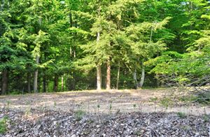 Photo of Lost Canyon Road #5, Pentwater, MI 49449 (MLS # 19026600)